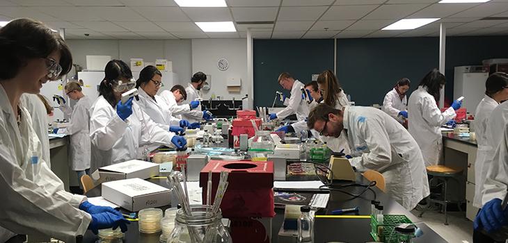 Biosafety lab
