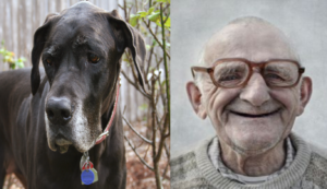 granddads and great danes