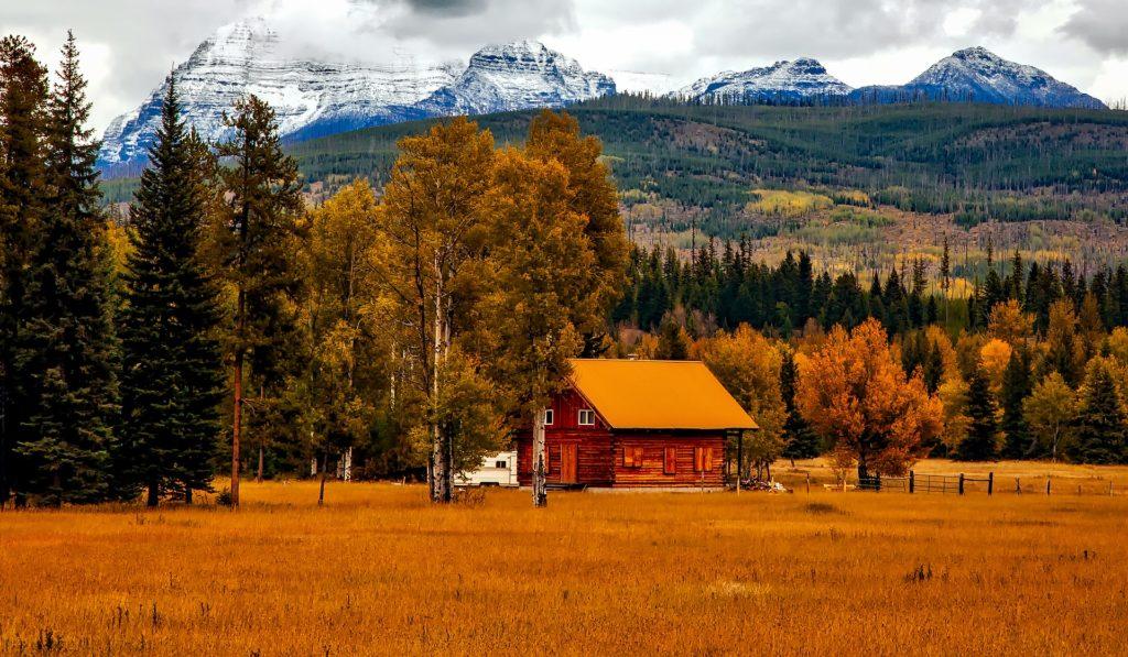 Colorado in the Autumn