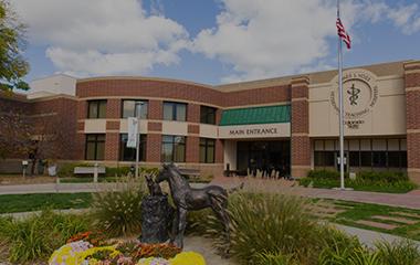 CSU vet hospital
